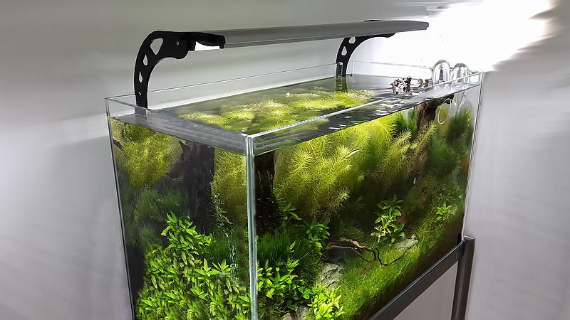 akvárium világítás LCH20