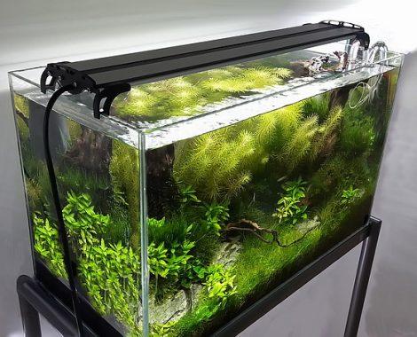 Akvárium LED világítás, növényes akváriumokhoz, extra széles spektrumú AM-LDX4